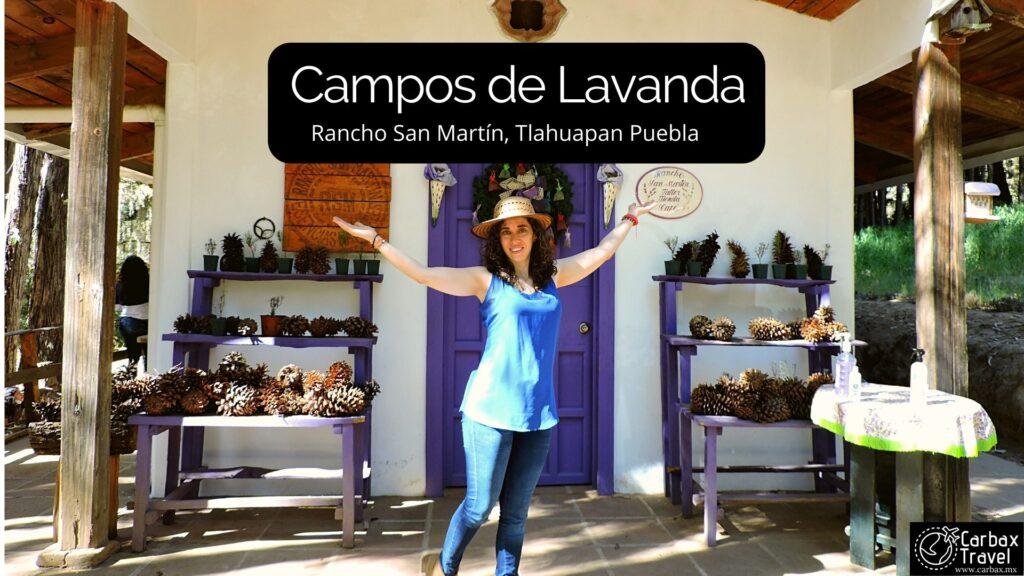 Campos de Lavanda Puebla