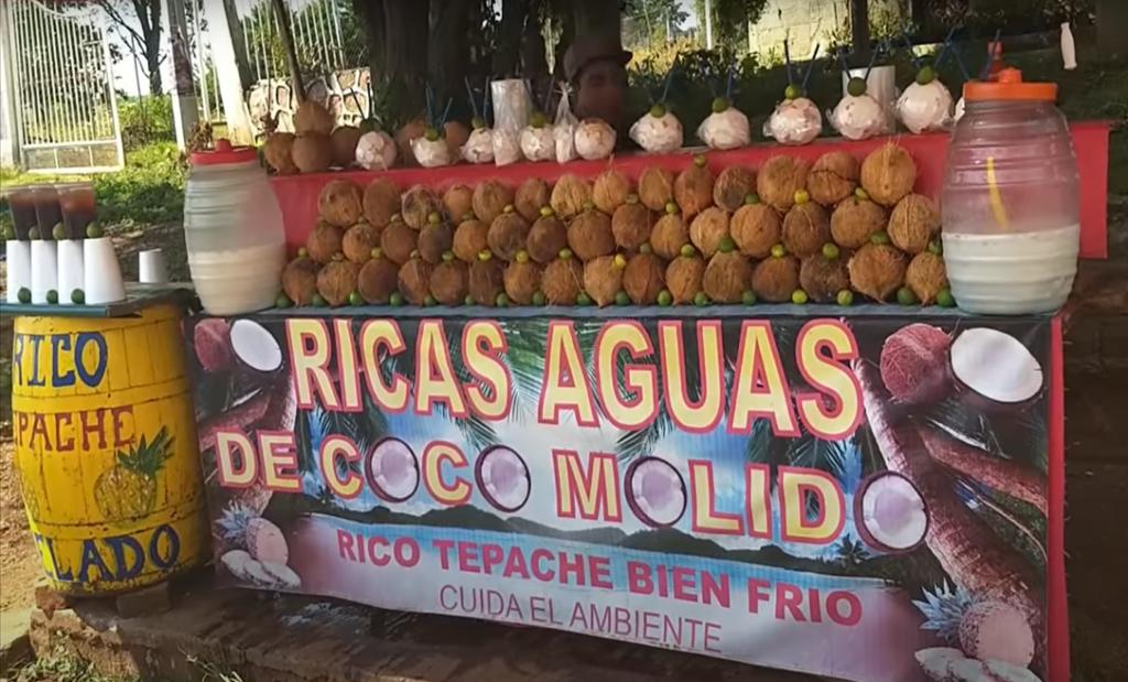 Guia para Jungapeo Aguas de Coco